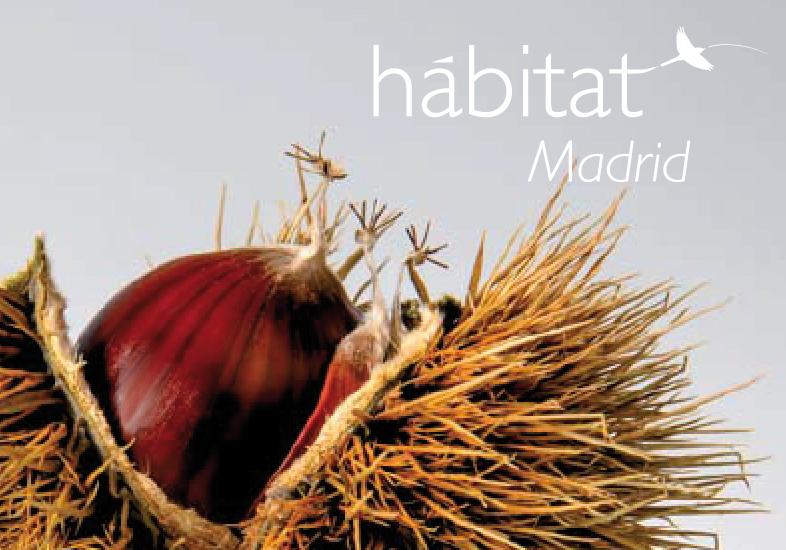 Habitat Madrid Otoño
